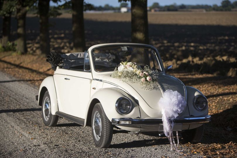 Maggiolino nozze in autunno