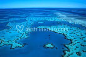Australia - Grande Barriera C.