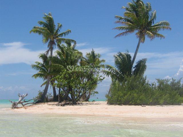 Fakarava - Polinesia Francese