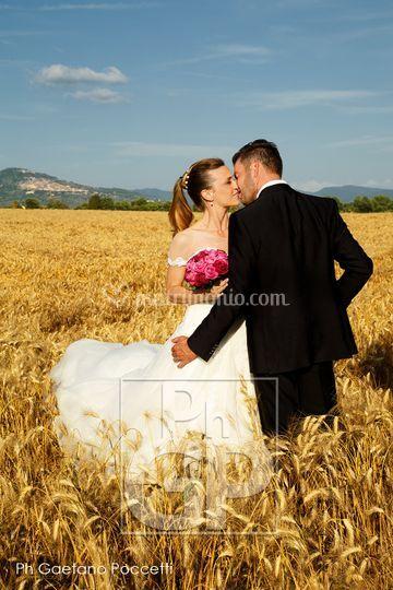 © G. Poccetti wedding photo
