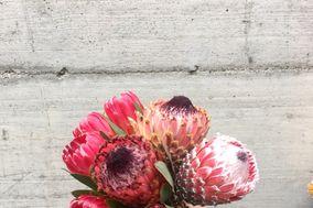 Victoria Flowers