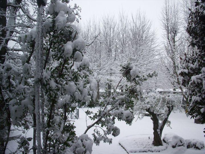 Villa garden ristorante - Giardino d inverno costo ...