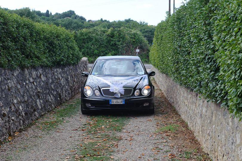Sartini Siena