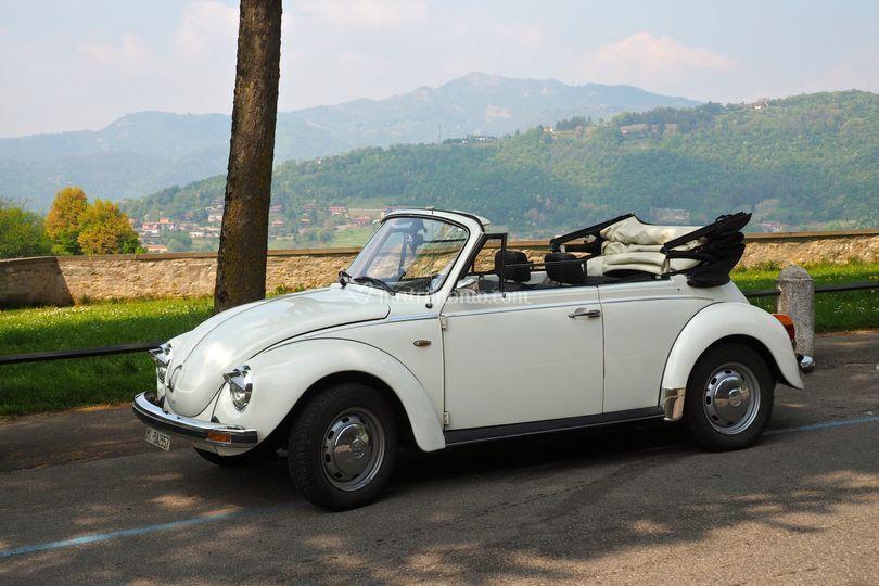 VW Maggiolone Cabriolet