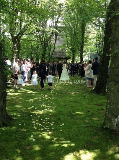 Matrimonio Bosco Toscana : Diodona spazio e ristorante