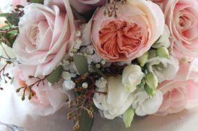 Il Fiore di Reverberi Alessandra