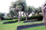 Giardino esterno di Paradiso