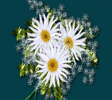 Miglior decorazione floreale