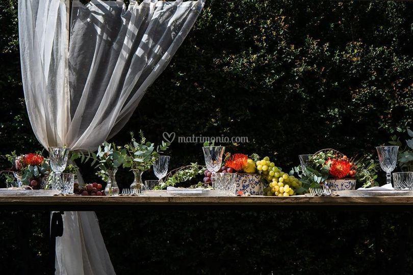 Noleggio Arredi - Prêt à placée tavola e decori