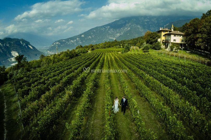 Immagine di coppia nelle vigne