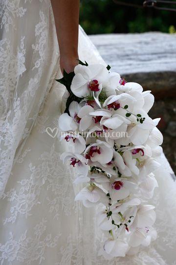 Matrimonio Country Chic Brianza : Maria grazia rizzotti event designer