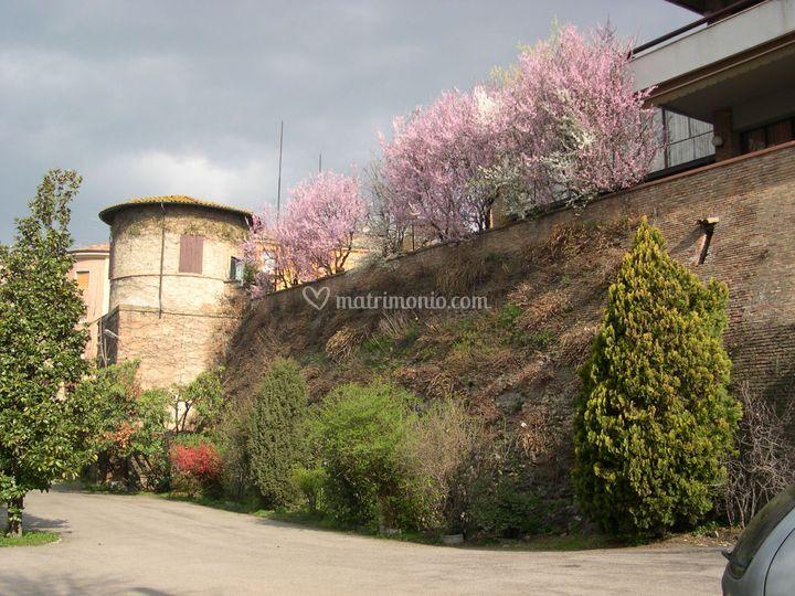 Ristorante Old River