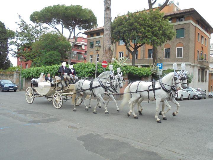 Caleche con quattro cavalli