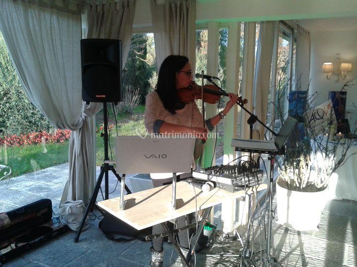 Violino I Massini