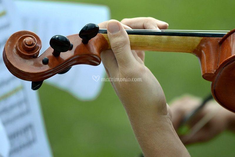 Violino cerimonia ricevimento