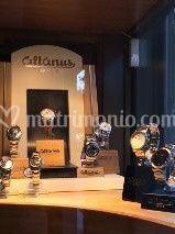 Altanus