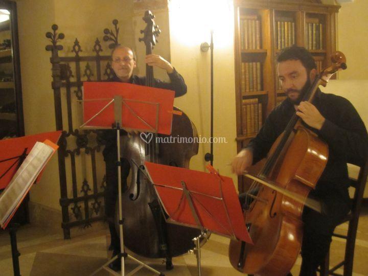 String Quartet Lebemi