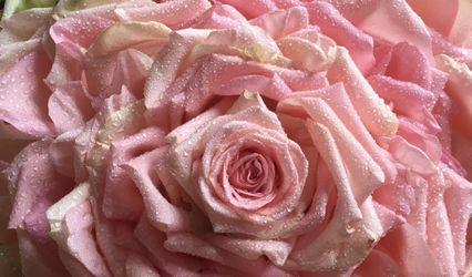 Renata Coser Florist Design
