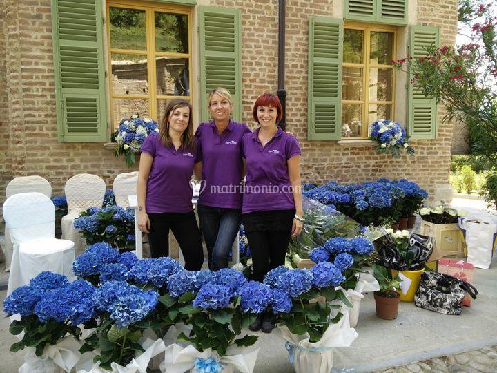 Staff Reflore