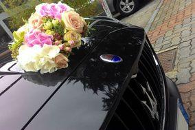 Blue Driver