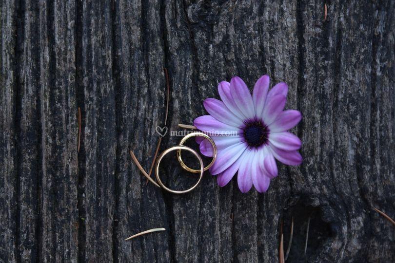 Due anelli per unirvi
