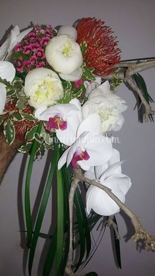 Buquet orchidee e peonie