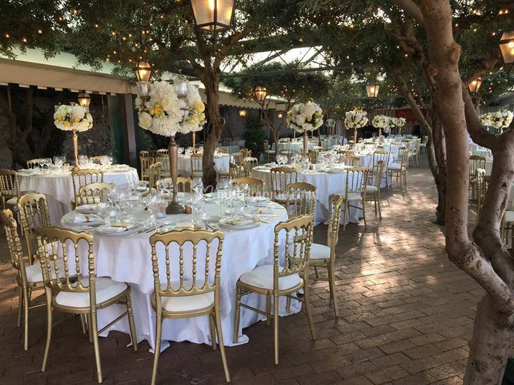 Sala degli Olivi