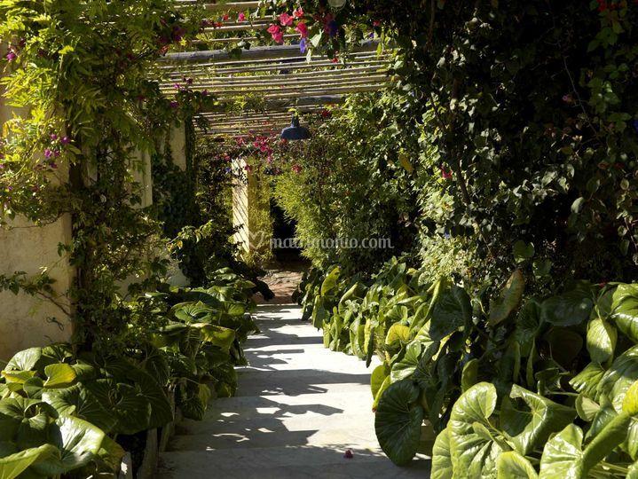 Stunning La Pergola Lodi Photos - ubiquitousforeigner.us ...