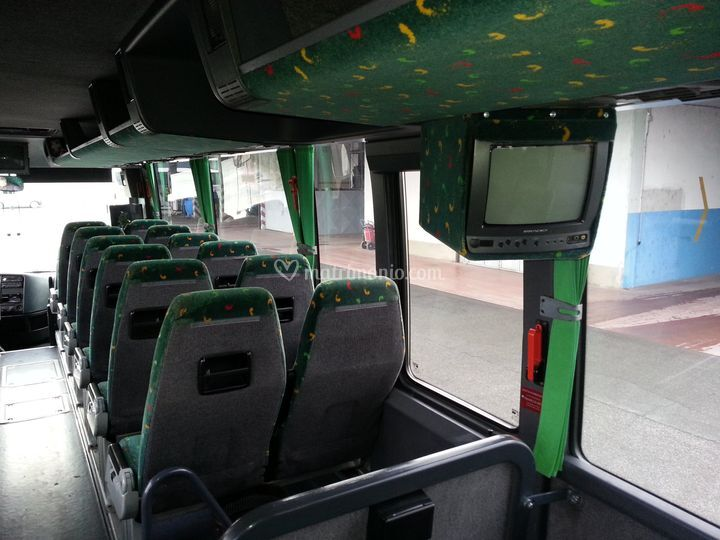 Interno bus ,dvd con monitor