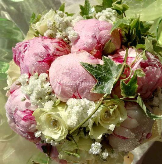 Peonies, rose e fresie