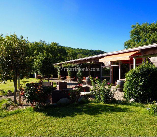 Beautiful residence in Maremma