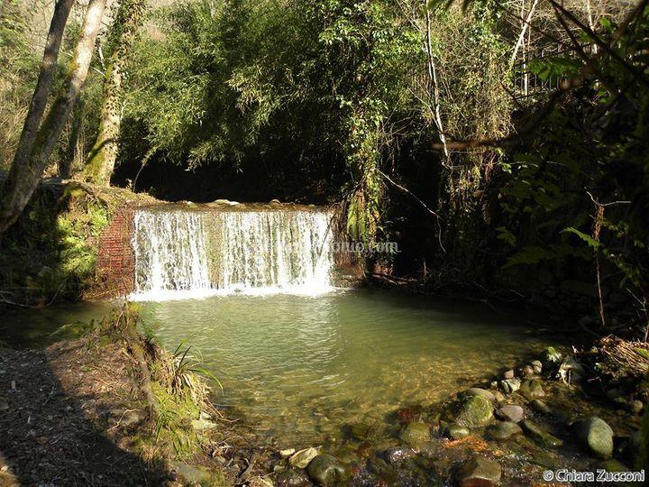 Cascata al giardino Yen