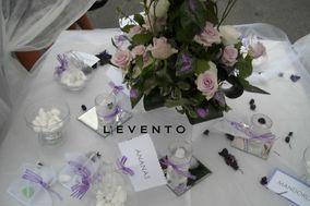 L'Evento di Paola Daniselli