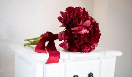 Helianthus Flores Lou