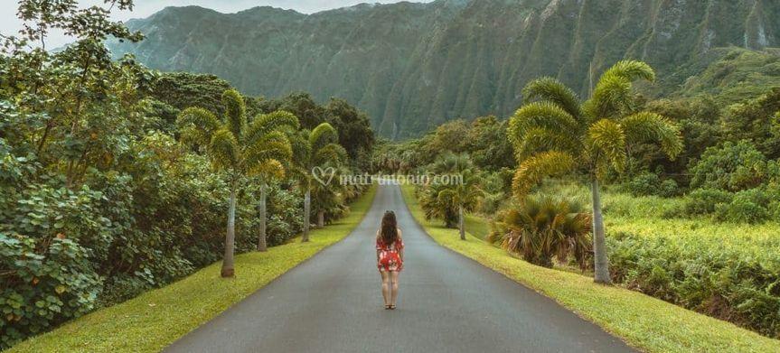 Hawii, non solo mare