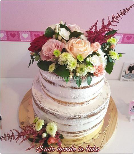 Il Mio Mondo in Cake