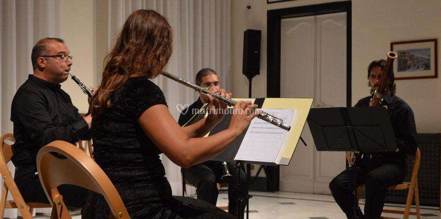 Nomos Ensemble Wind Quartet