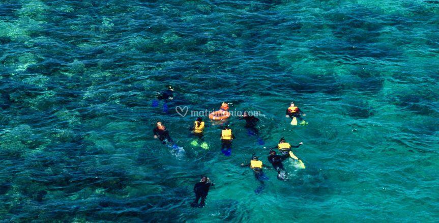 Snorkeling nel Reef
