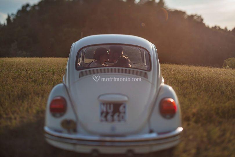 © Copyright amaneraphoto