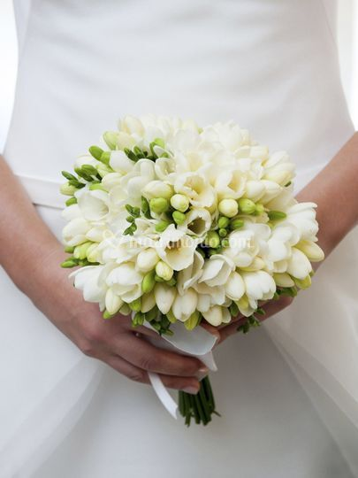 Wedding Planner Pavia