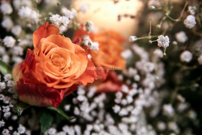 Scelta dei fiori