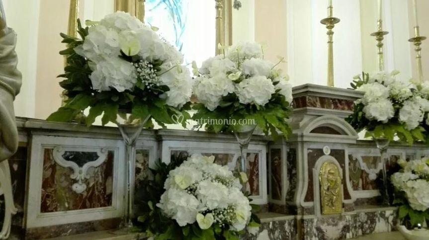 Ortensie Matrimonio Costo : Essenza dei fiori