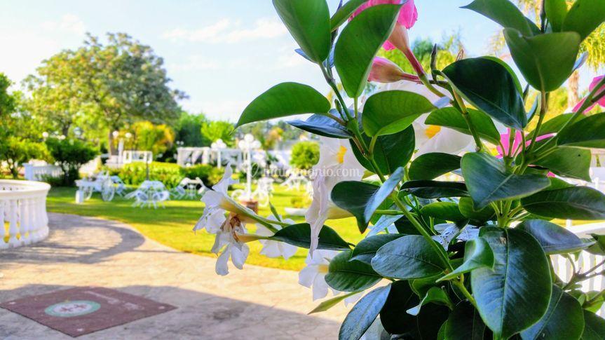 I fiori del Resort