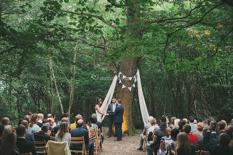 Matrimonio Simbolico Celebrante : Celebrante nozze simboliche