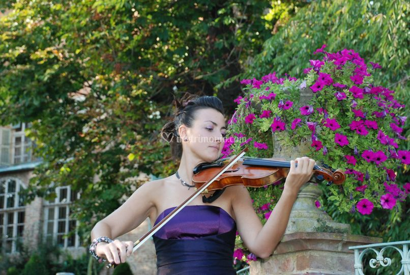 Luana D'Andrea - violin