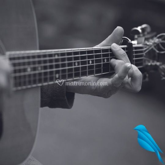 Chitarra e voce maschile