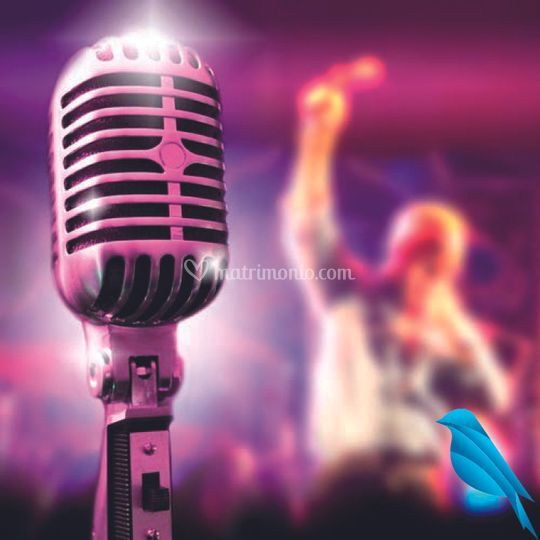 Dj e Cantante