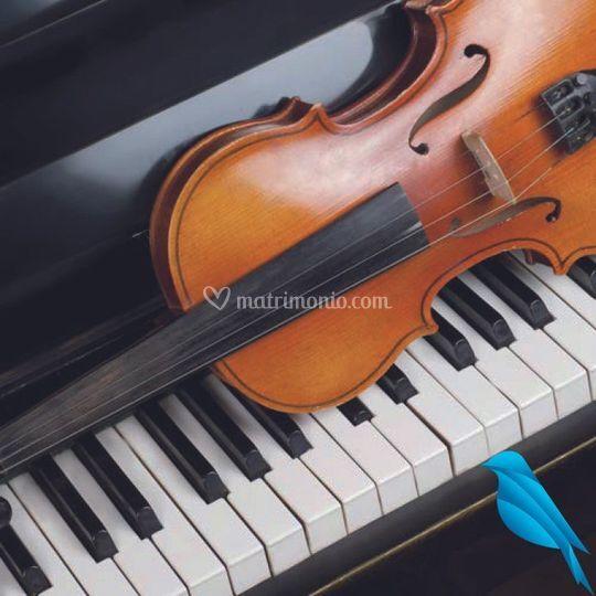 Organo violino e voce