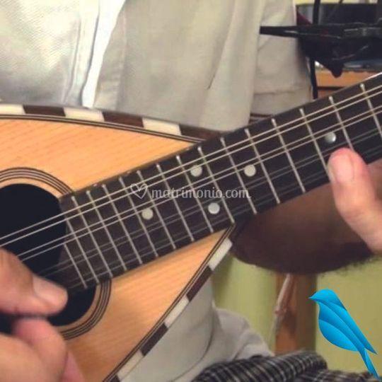 Posteggia chitarra mandolino