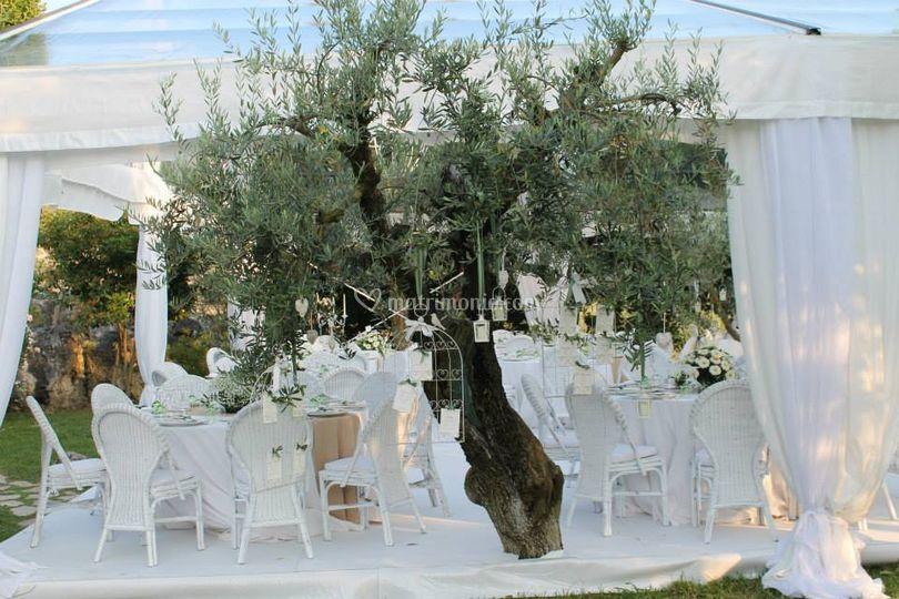 Tableau mariage ulivo
